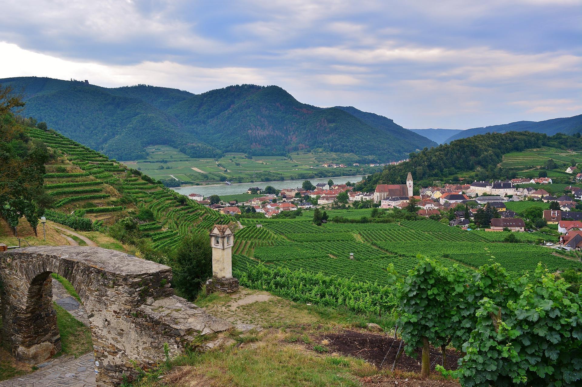 Wachau Oostenrijk wijngaarden bergen kerk