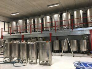 Nederlandse wijnmakerij