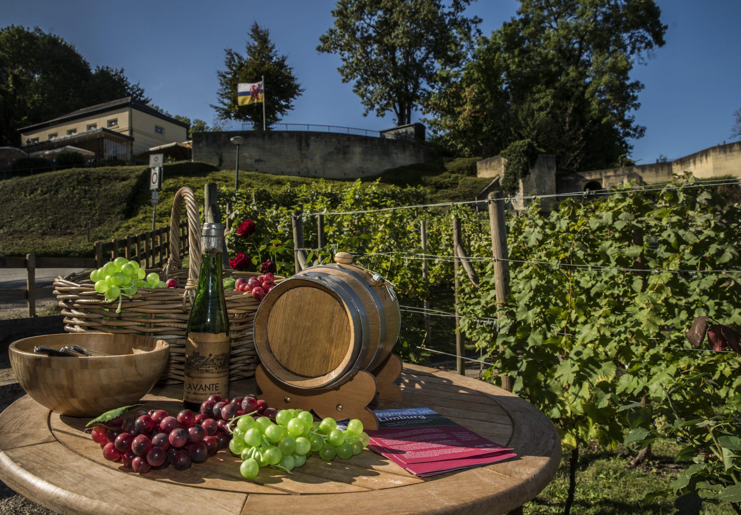 Wijngaard Limburgse wijn Mergelland