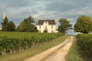 Bordeaux merlot cabernet sauvignon