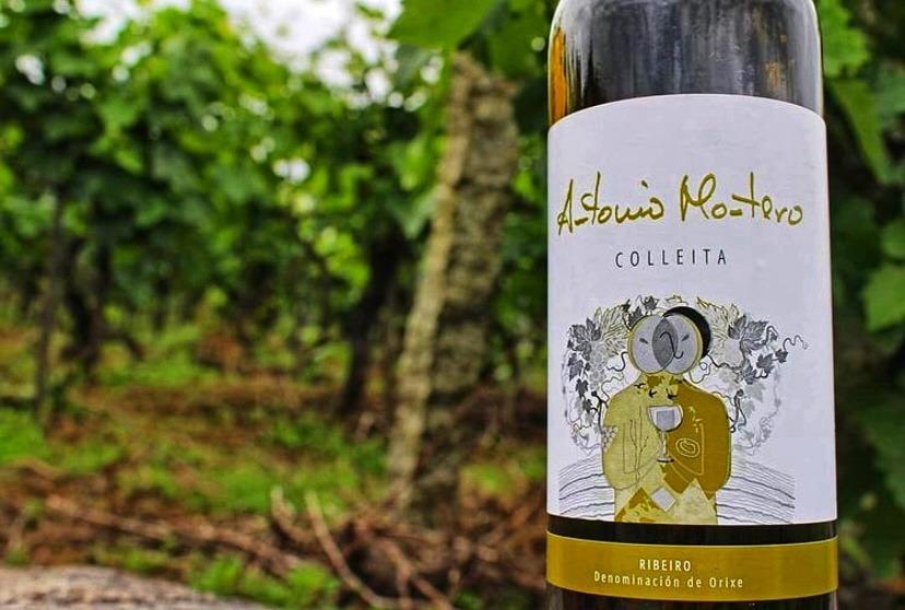 witte wijn galicië treixadura