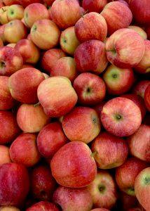 appelcider appelwijn appels