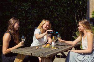 picknick wijn